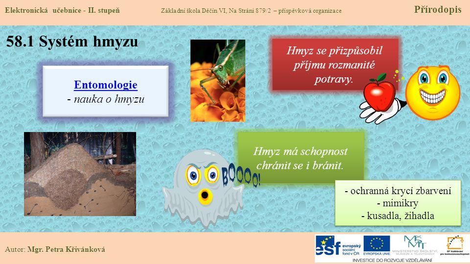 58.1 Systém hmyzu Hmyz se přizpůsobil příjmu rozmanité potravy.