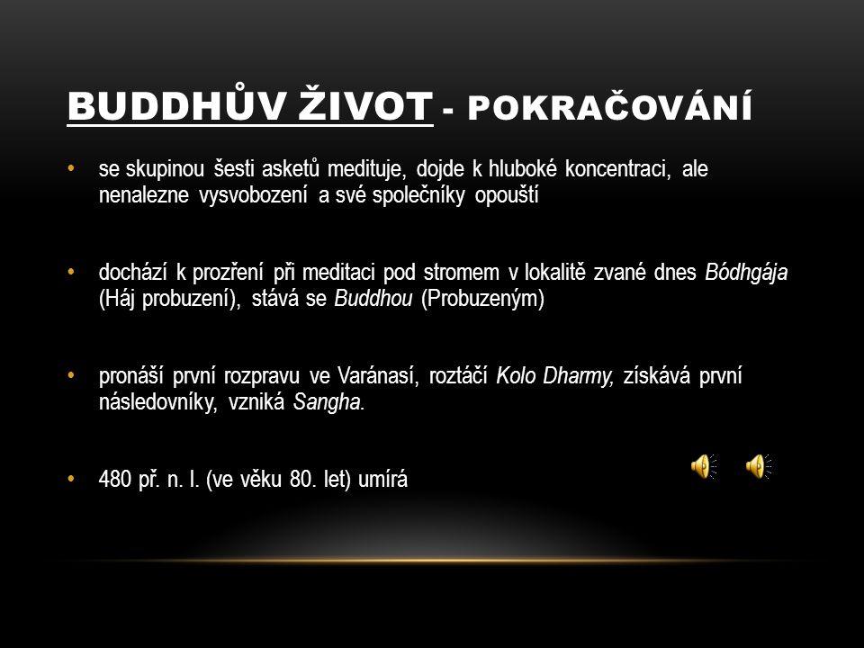 Buddhův život - pokračování