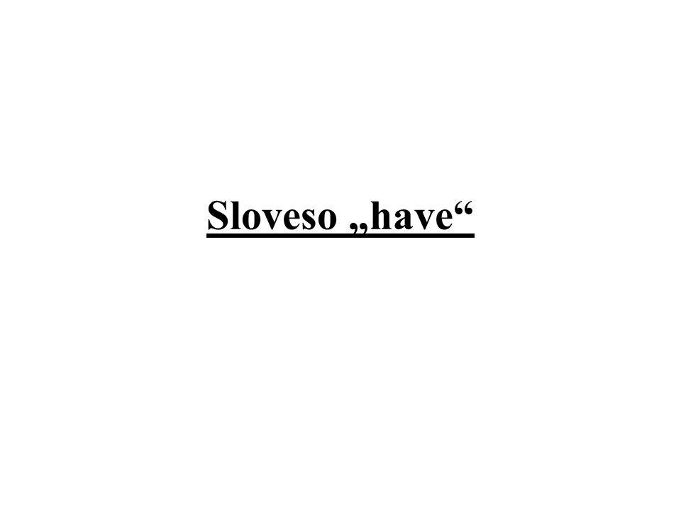 "Sloveso ""have"