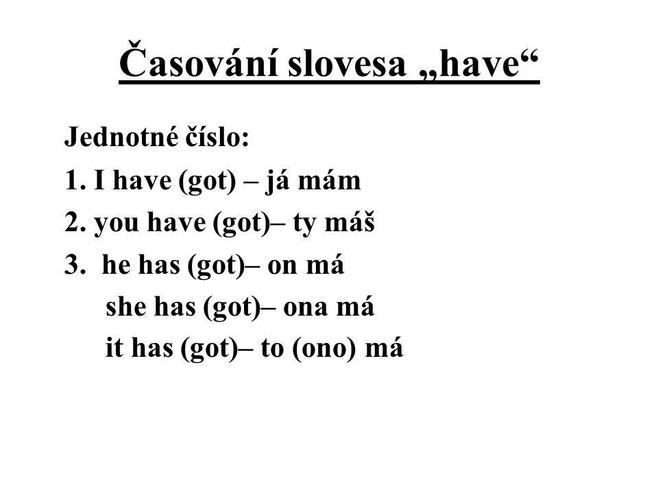 """Časování slovesa """"have"""