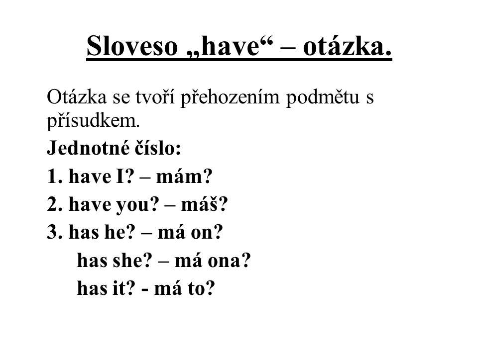 """Sloveso """"have – otázka."""