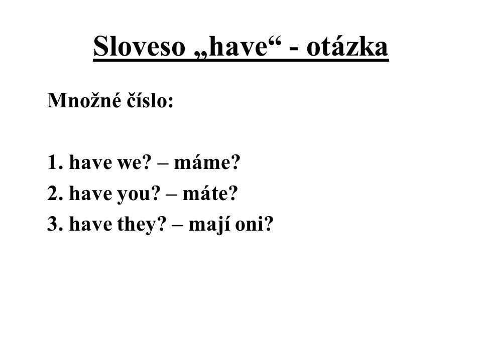 """Sloveso """"have - otázka"""
