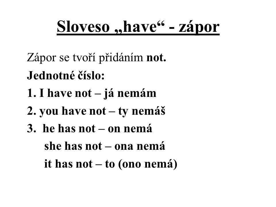 "Sloveso ""have - zápor"
