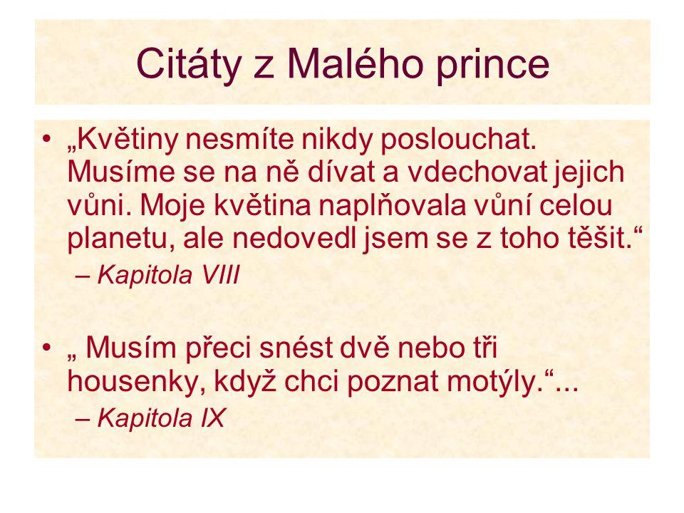 Citáty z Malého prince