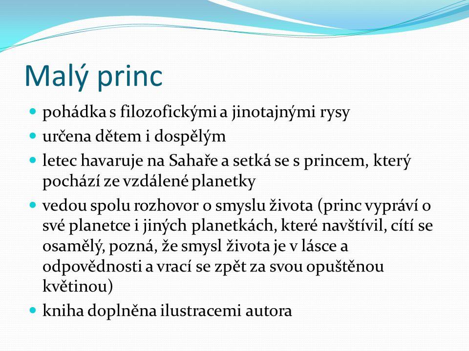 Malý princ pohádka s filozofickými a jinotajnými rysy