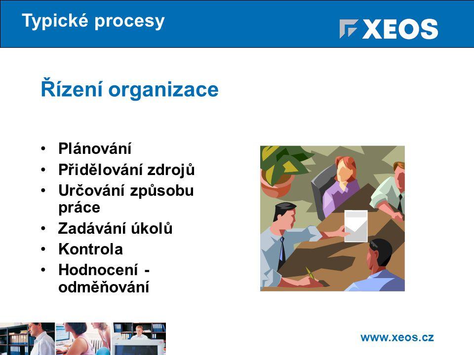 Řízení organizace Typické procesy Plánování Přidělování zdrojů