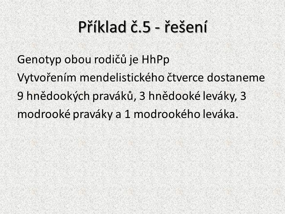 Příklad č.5 - řešení