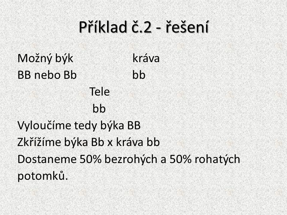 Příklad č.2 - řešení Možný býk kráva BB nebo Bb bb Tele bb