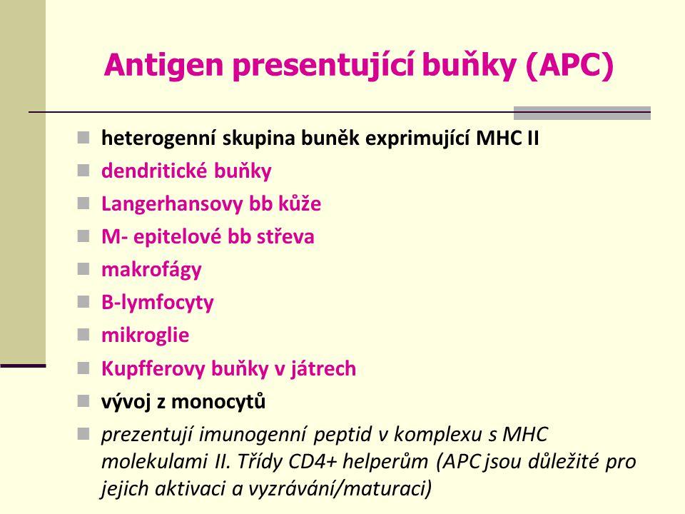 Antigen presentující buňky (APC)