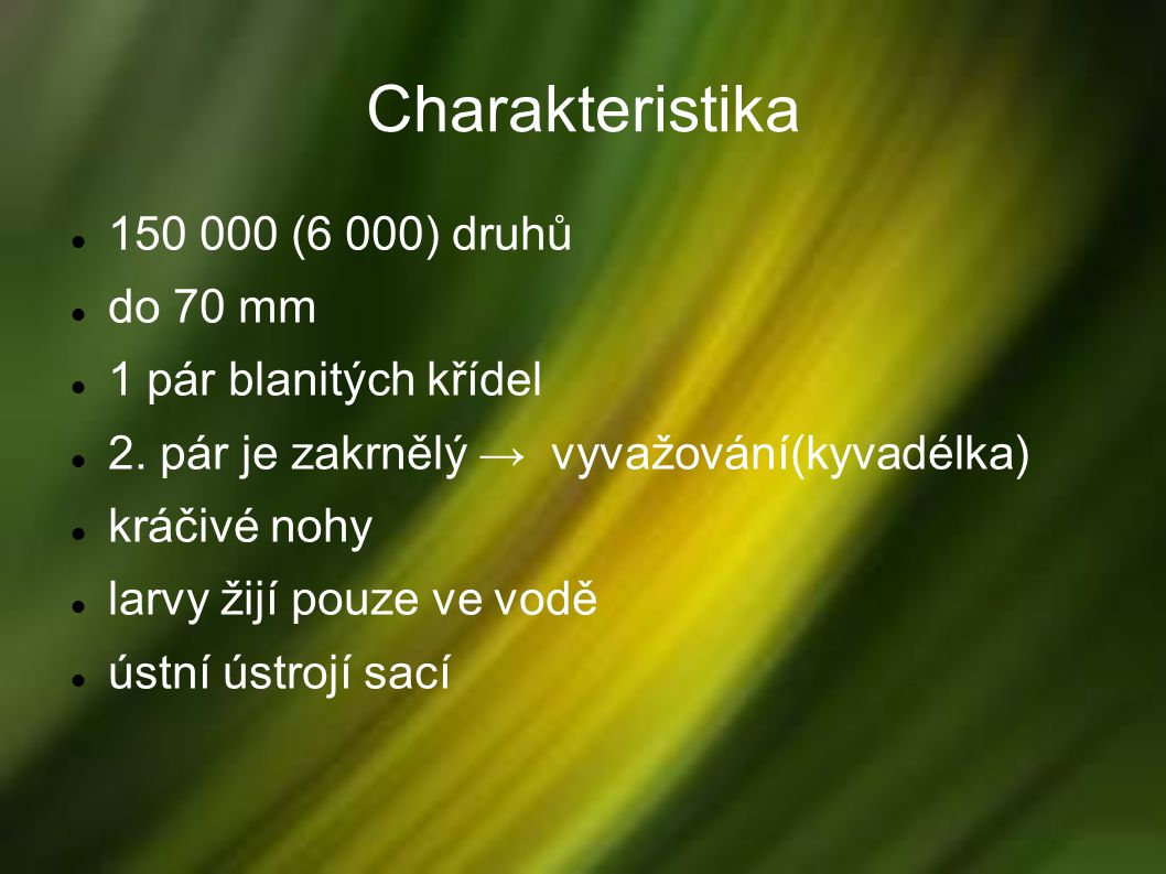 Charakteristika 150 000 (6 000) druhů do 70 mm 1 pár blanitých křídel