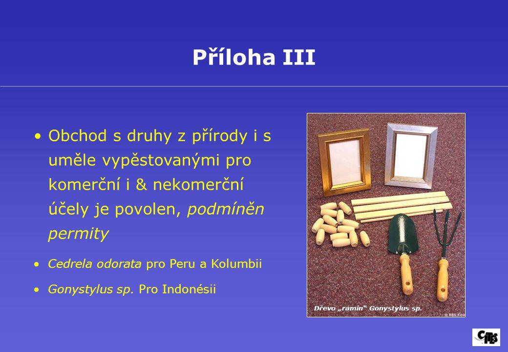 """Dřevo """"ramin Gonystylus sp."""
