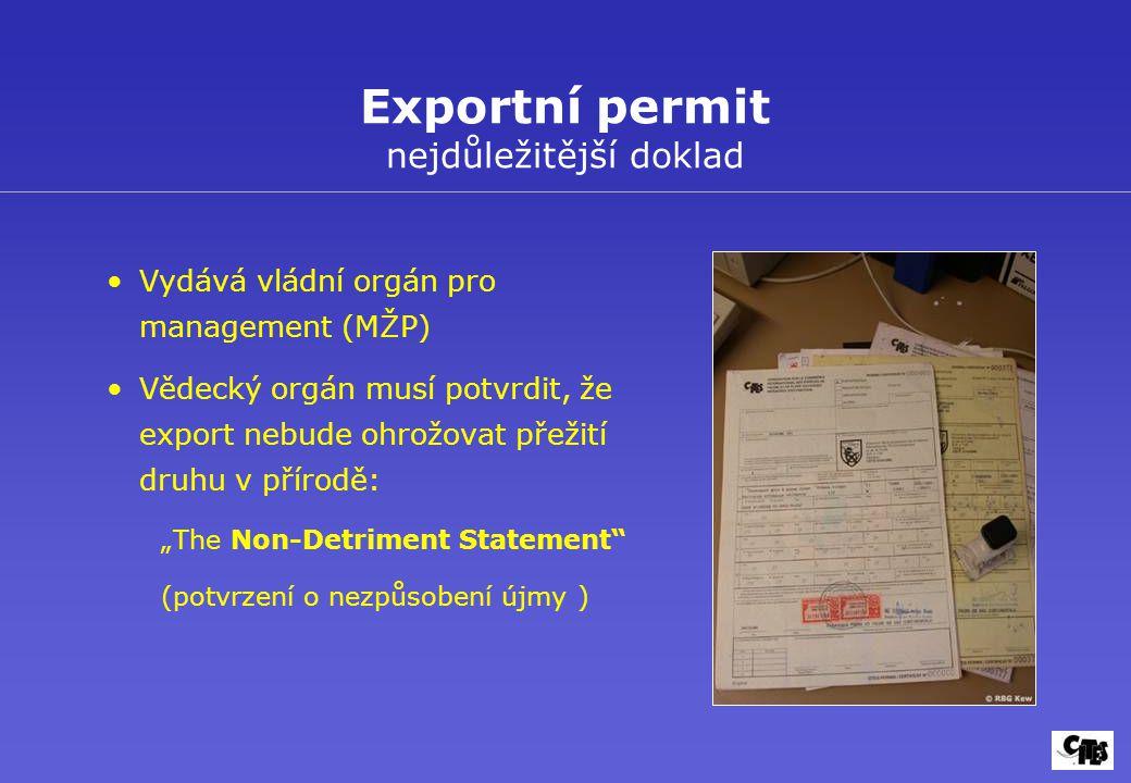 Exportní permit nejdůležitější doklad