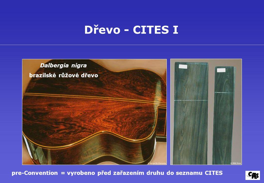 Dřevo - CITES I Dalbergia nigra brazilské růžové dřevo
