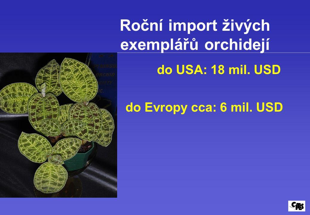 Roční import živých exemplářů orchidejí