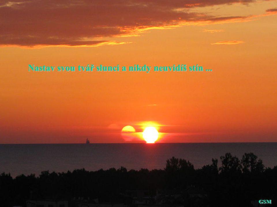 Nastav svou tvář slunci a nikdy neuvidíš stín ...