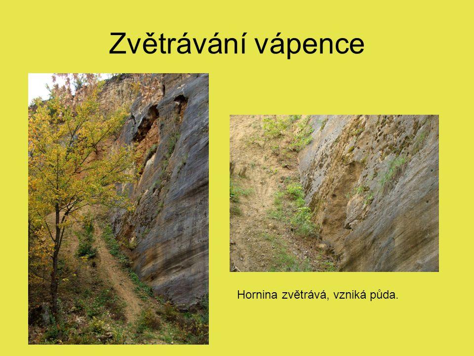 Zvětrávání vápence Hornina zvětrává, vzniká půda.