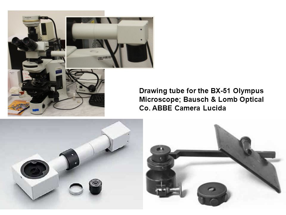 Drawing tube for the BX-51 Olympus Microscope; Bausch & Lomb Optical Co. ABBE Camera Lucida