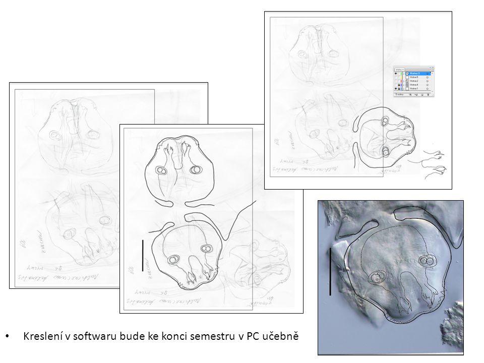 Kreslení v softwaru bude ke konci semestru v PC učebně