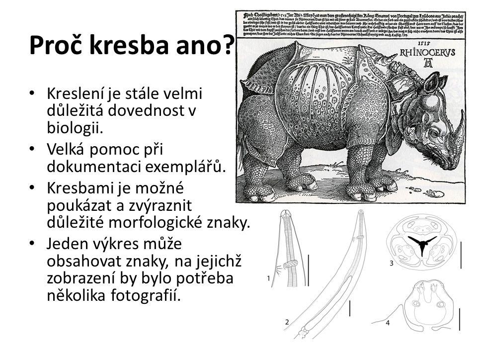 Proč kresba ano Kreslení je stále velmi důležitá dovednost v biologii. Velká pomoc při dokumentaci exemplářů.
