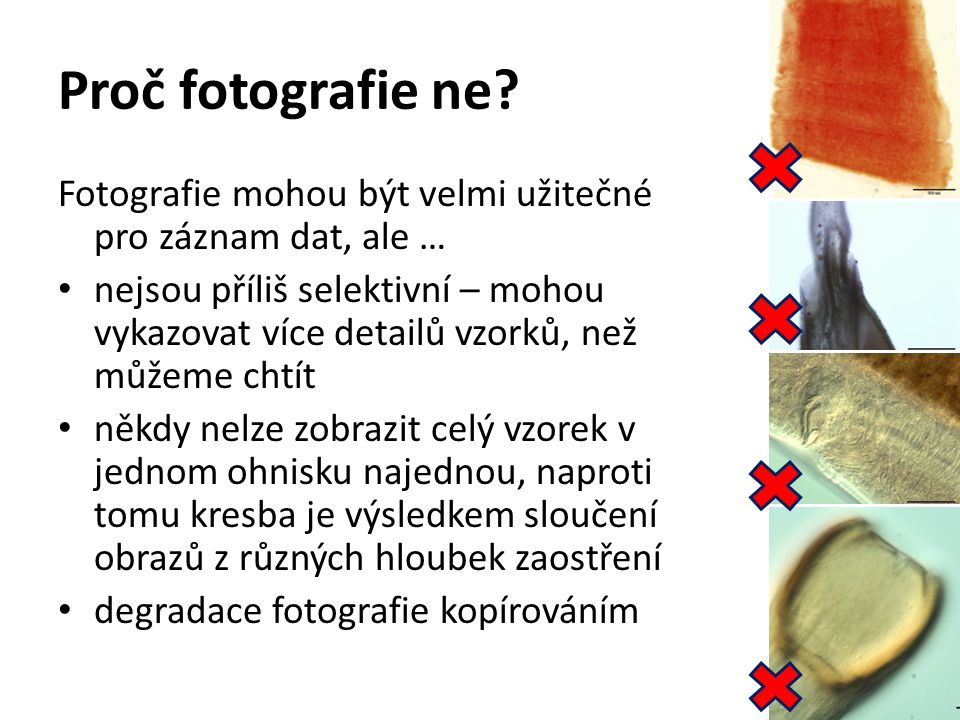Proč fotografie ne Fotografie mohou být velmi užitečné pro záznam dat, ale …