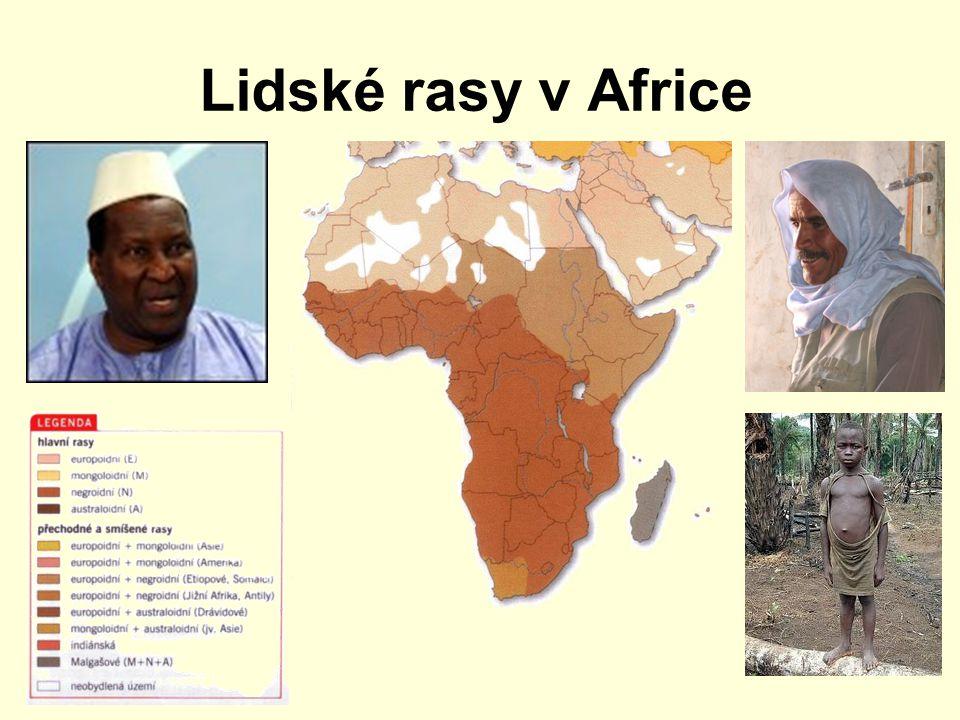 Lidské rasy v Africe