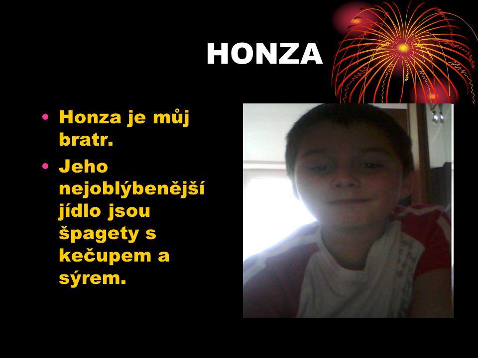 HONZA Honza je můj bratr.