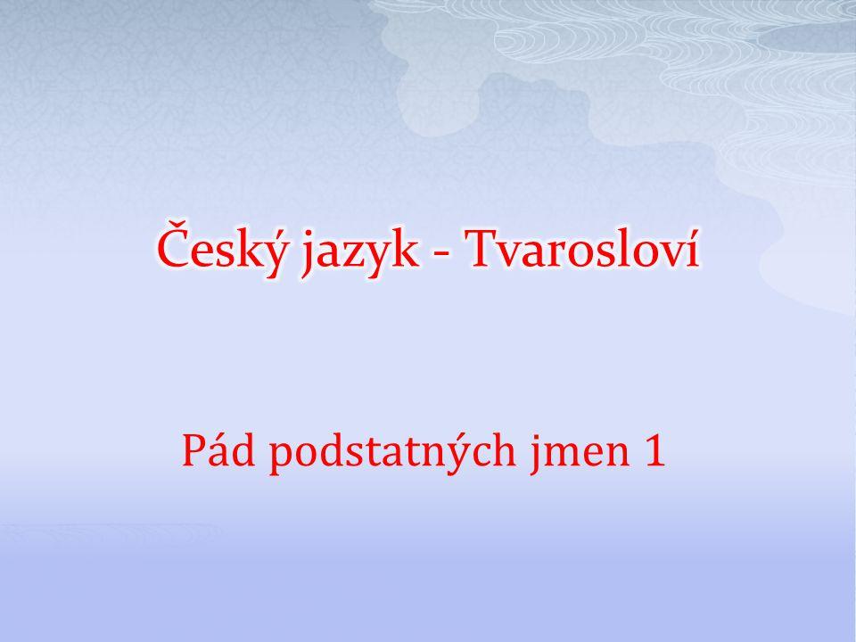 Český jazyk - Tvarosloví