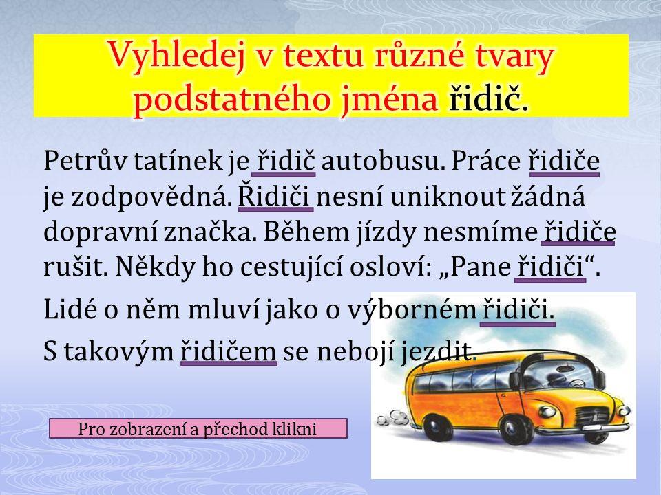 Vyhledej v textu různé tvary podstatného jména řidič.