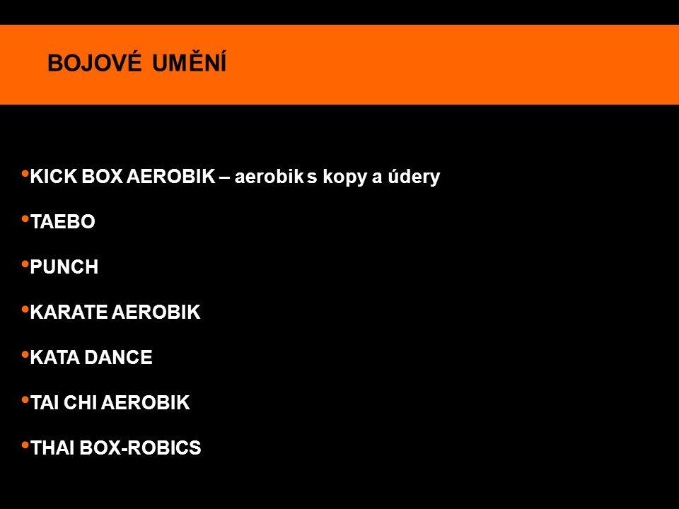 BOJOVÉ UMĚNÍ KICK BOX AEROBIK – aerobik s kopy a údery TAEBO PUNCH