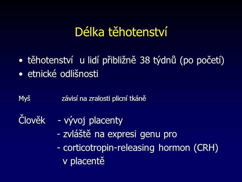 Délka těhotenství těhotenství u lidí přibližně 38 týdnů (po početí)