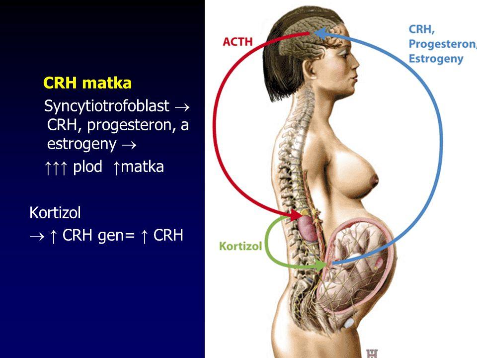 CRH matka Syncytiotrofoblast  CRH, progesteron, a estrogeny  ↑↑↑ plod ↑matka.