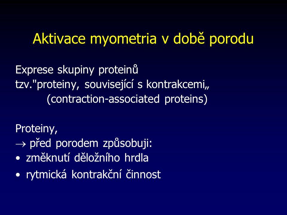 Aktivace myometria v době porodu