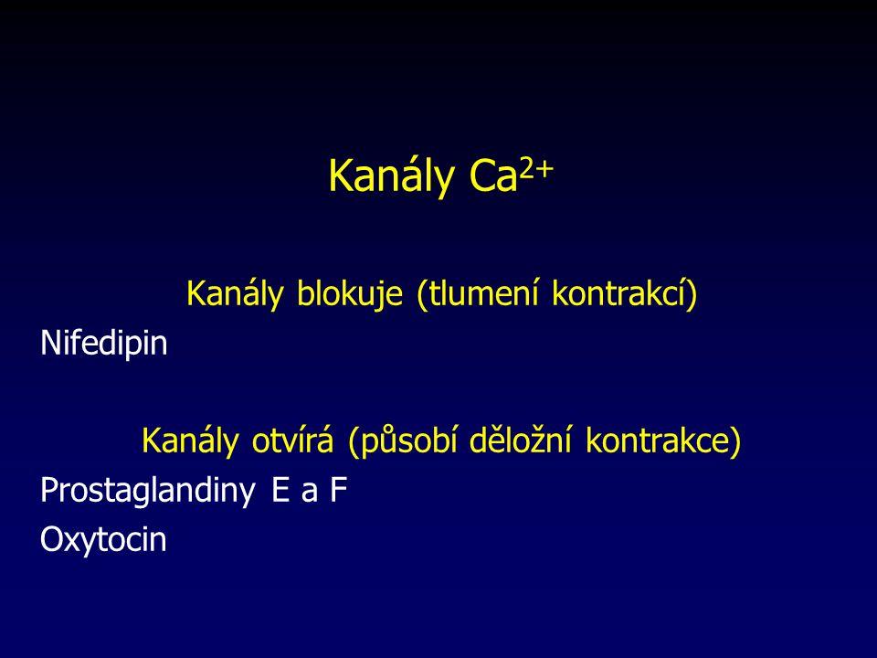 Kanály Ca2+ Kanály blokuje (tlumení kontrakcí) Nifedipin