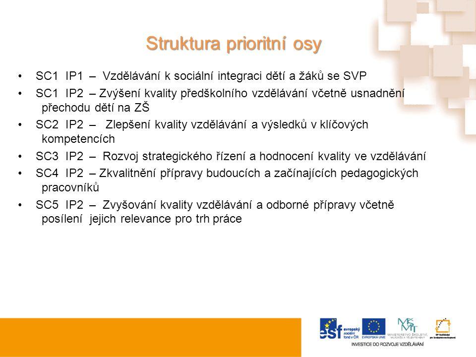 Struktura prioritní osy