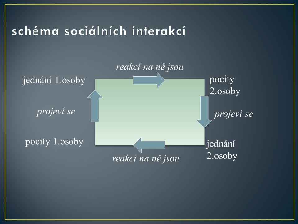 schéma sociálních interakcí