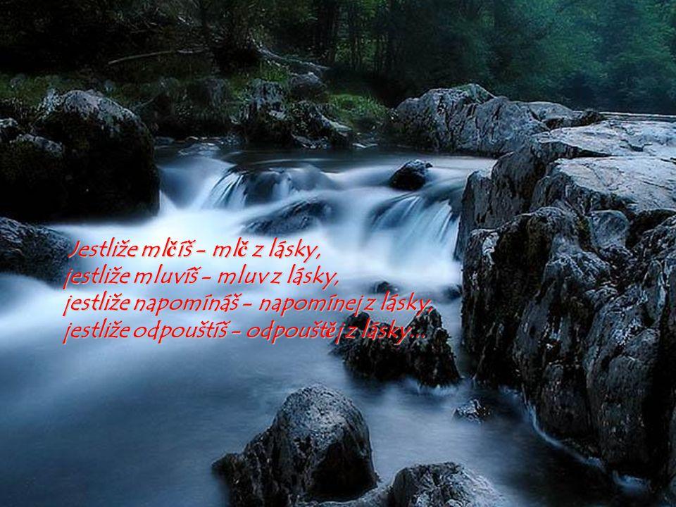 Jestliže mlčíš - mlč z lásky, jestliže mluvíš - mluv z lásky, jestliže napomínáš - napomínej z lásky, jestliže odpouštíš - odpouštěj z lásky...