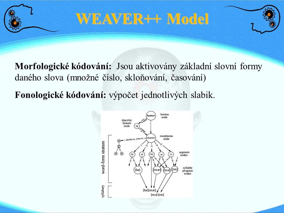 WEAVER++ Model Morfologické kódování: Jsou aktivovány základní slovní formy daného slova (množné číslo, skloňování, časování)