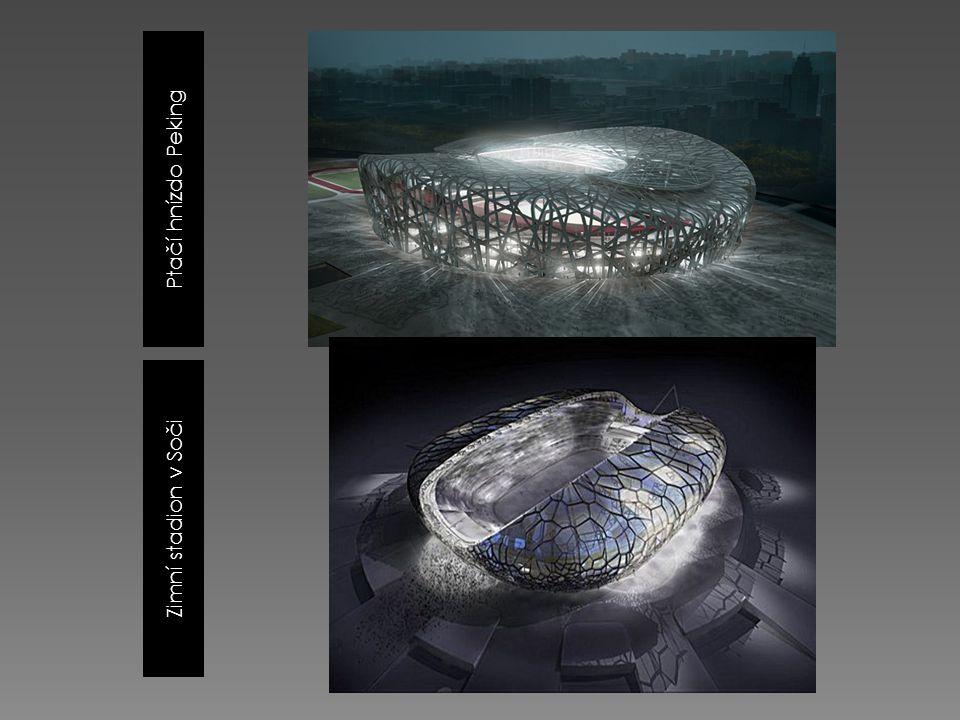 Ptačí hnízdo Peking Zimní stadion v Soči