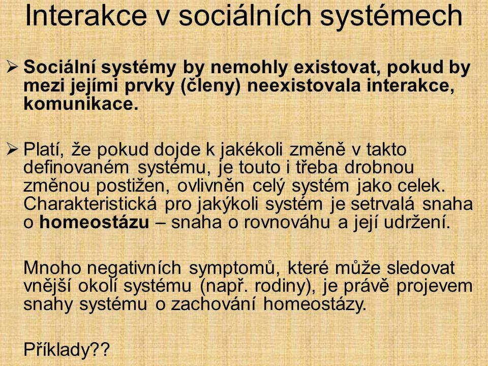 Interakce v sociálních systémech