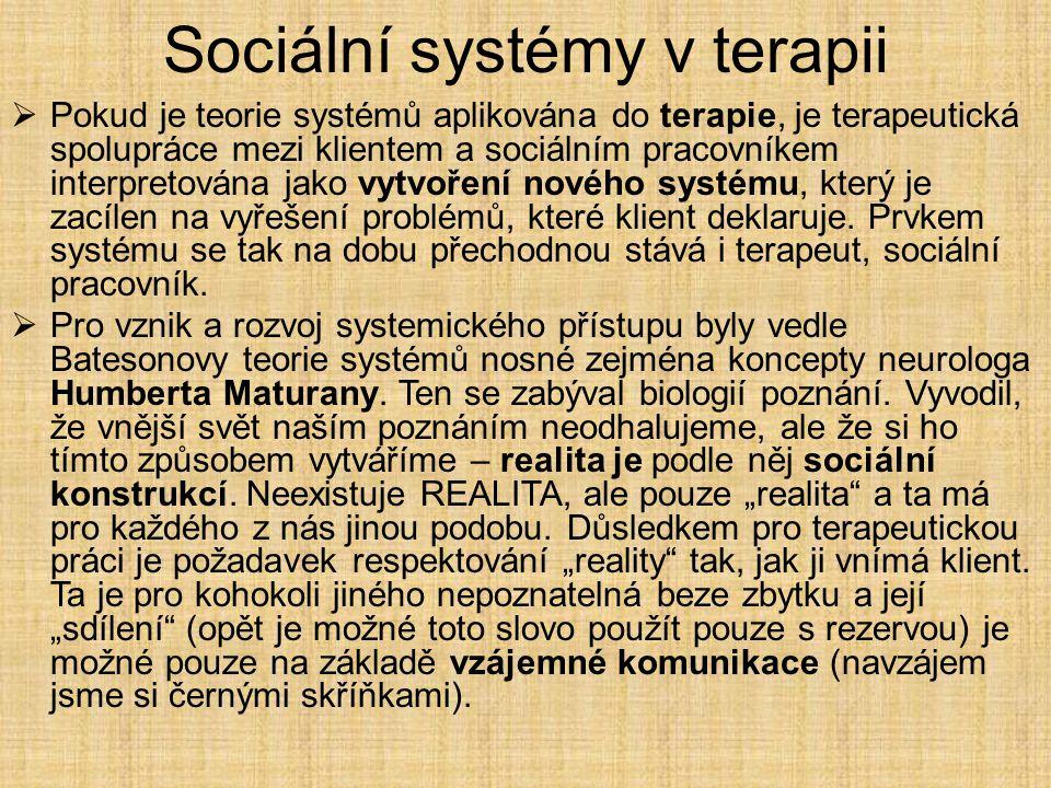 Sociální systémy v terapii