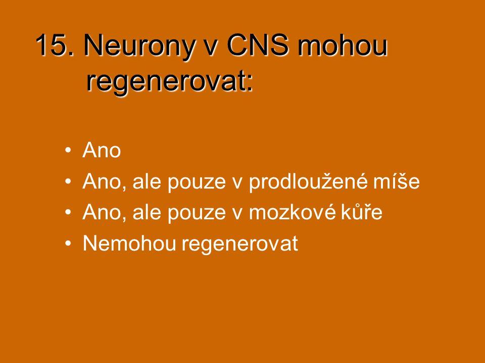 15. Neurony v CNS mohou regenerovat:
