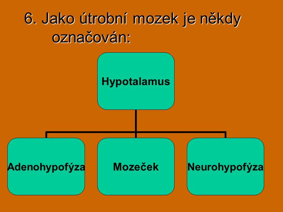 6. Jako útrobní mozek je někdy označován: