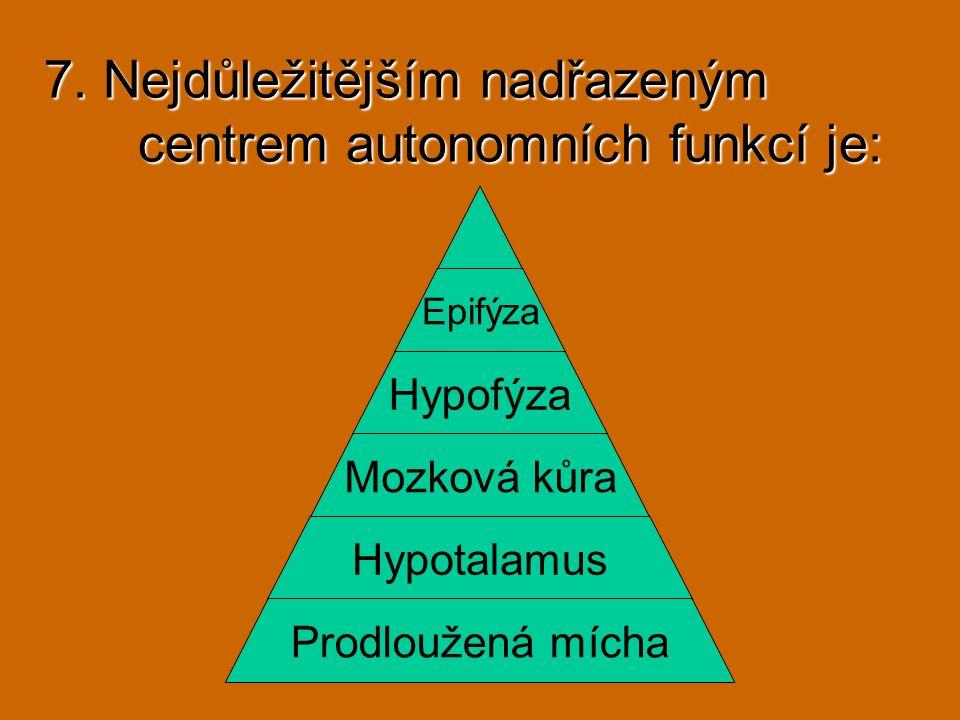 7. Nejdůležitějším nadřazeným centrem autonomních funkcí je: