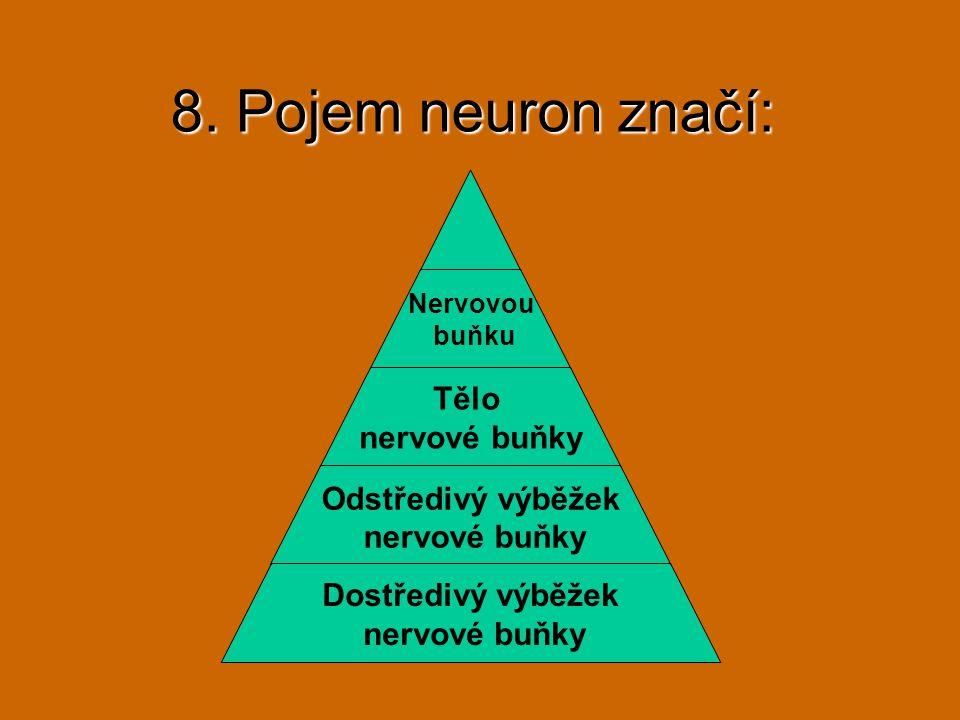 8. Pojem neuron značí: