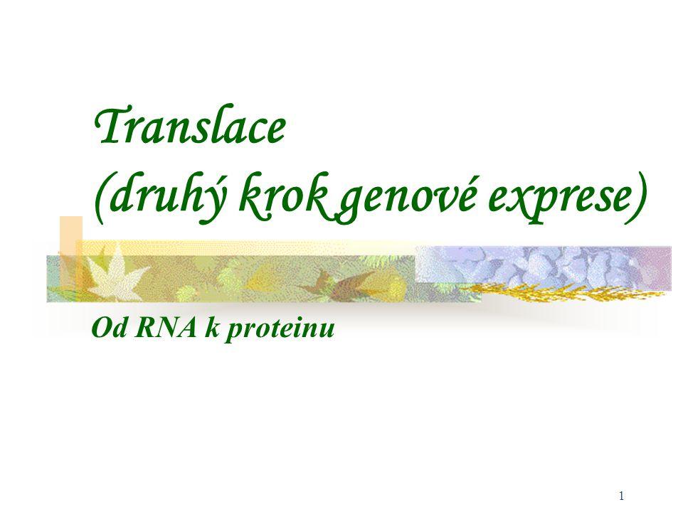 Translace (druhý krok genové exprese)