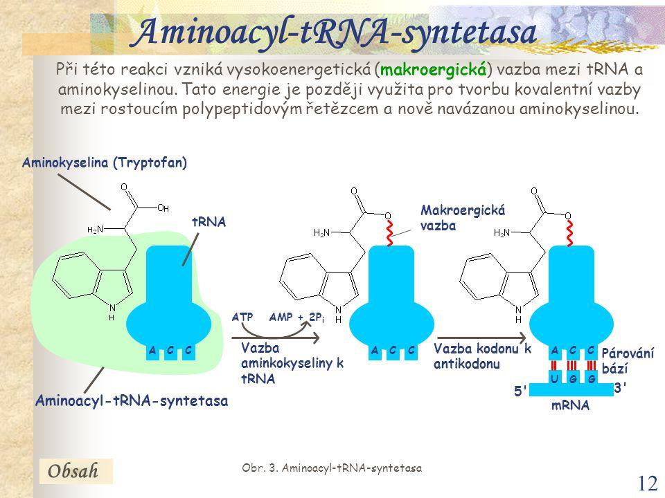 Aminoacyl-tRNA-syntetasa