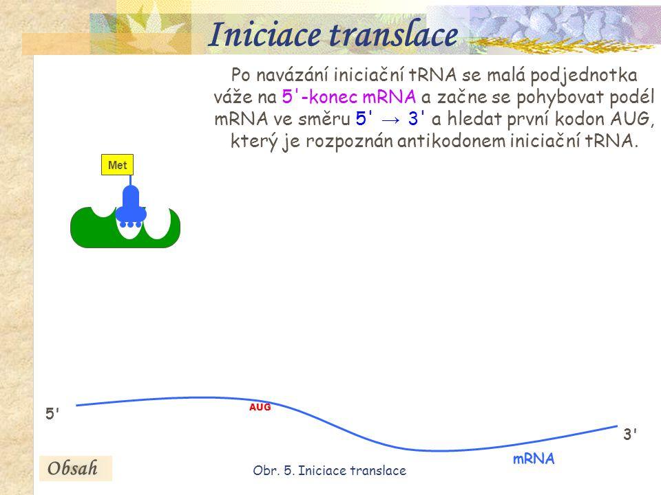 Obr. 5. Iniciace translace