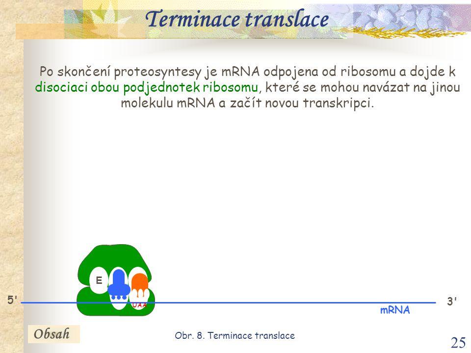 Obr. 8. Terminace translace