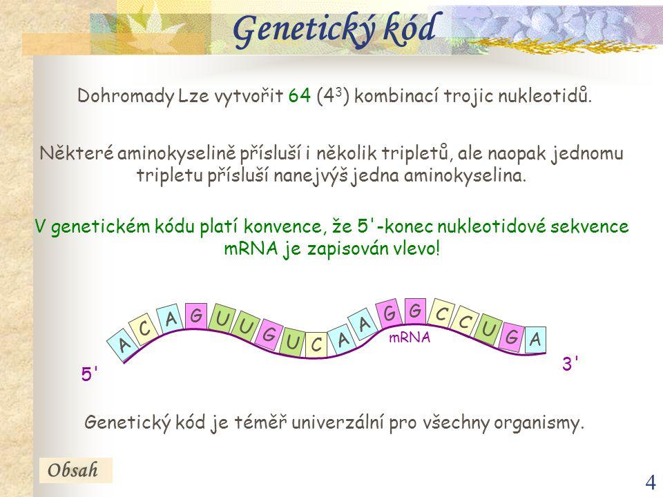 Genetický kód Dohromady Lze vytvořit 64 (43) kombinací trojic nukleotidů.