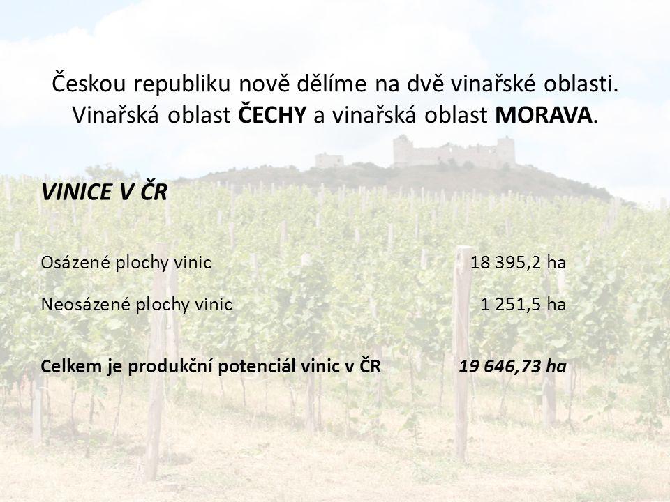Českou republiku nově dělíme na dvě vinařské oblasti